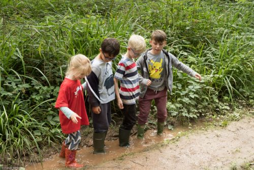 Play wild children Worcestershire - explore fun and play