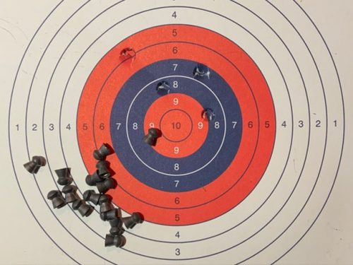 Target Shooting family Worcester