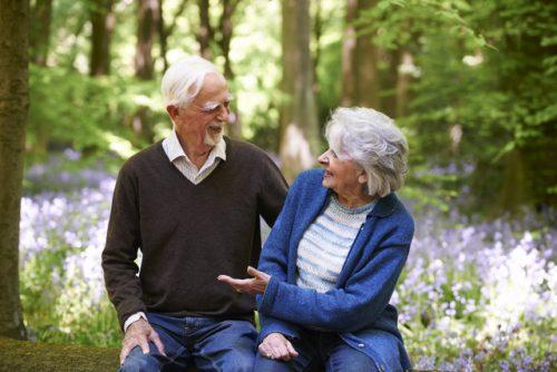 Woodland wellbeing bespoke events